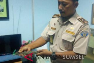 SKPIM Palembang ajak masyarakat jaga sumberdaya perikanan