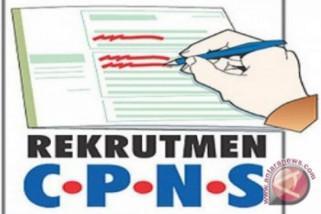 Pemkot Palembang perpanjang pendaftaran CPNS