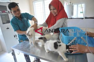 Peringatan hari rabies Sedunia