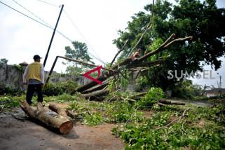 Pasca angin kencang di Jakabaring